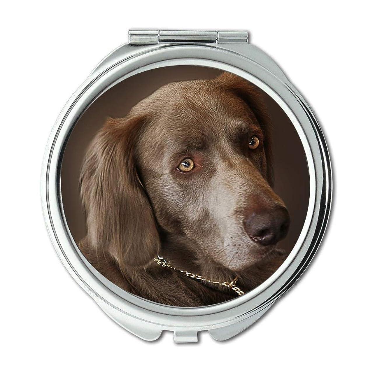 長椅子流す革新ミラー、コンパクトミラー、ワイマラナー犬狩猟犬動物肖像画ペット、ポケットミラー、携帯用ミラー