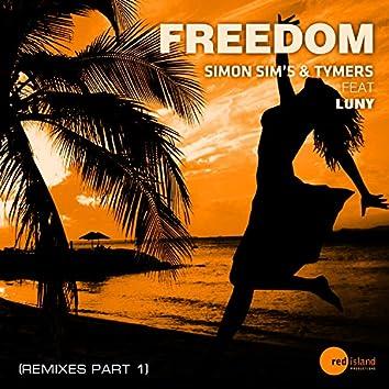 Freedom (Remixes, Pt. 1)