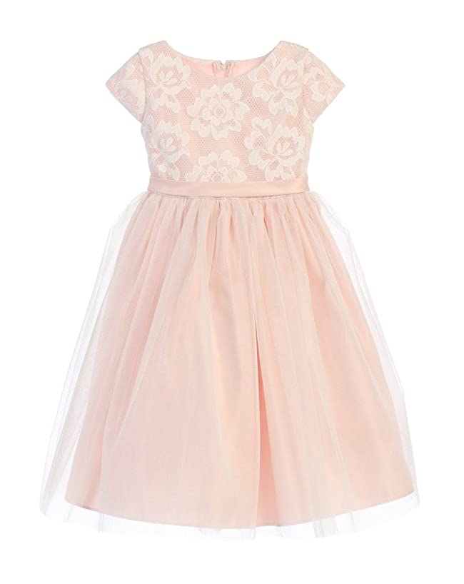 Sweet Kids Girls' Floral Mesh and Crystal Tulle Flower Girl Dress (2-12Y)