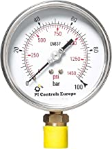 PI Controls UK Pressure Gauge, PG-100-R100-WF-BR