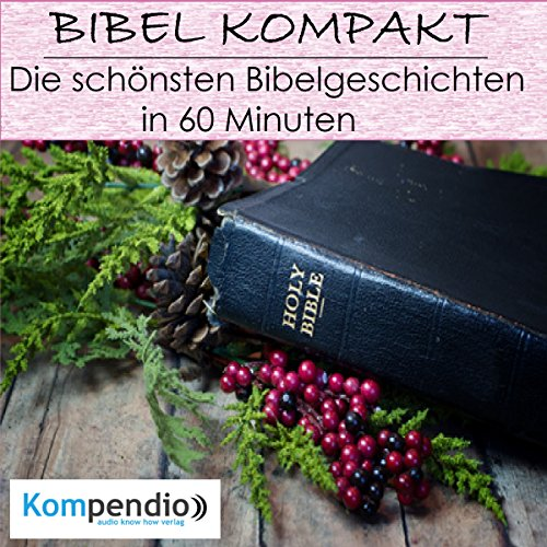 Die schönsten Bibelgeschichten in 60 Minuten audiobook cover art