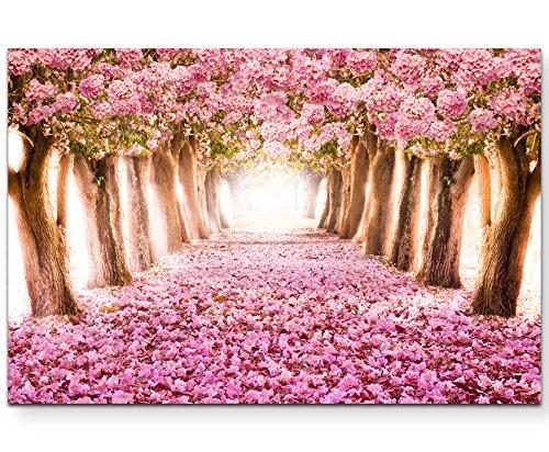 Paul Sinus Art Leinwandbilder | Bilder Leinwand 120x80cm Allee aus rosa Blüten