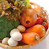 岡山産 新鮮野菜セット◆おまかせ8品目+放し飼い卵◆