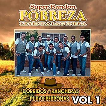 Corridos Y Rancheras Puras Perronas Vol 1