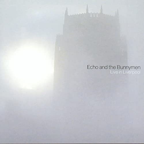 Image result for echo and the bunnymen liverpool