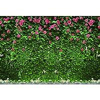 lovedomi 5x3ft 自然風景ロマンチックピンクローズフラワーグリーンつる壁写真背景写真スタジオブース家族休暇誕生日パーティー写真スタジオ小道具写真ビニール素材