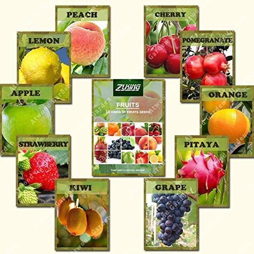 ZLKING 10 variétés mixtes 550PCS arbres fruitiers bio Sweet Seeds fruits confits Non-GMO Graines de plantes de légumes pour jardin