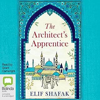 The Architect's Apprentice cover art