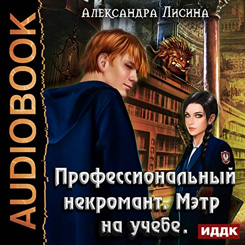A Professional Necromancer II. Maitre Is Studying [Russian Edition] audiobook cover art
