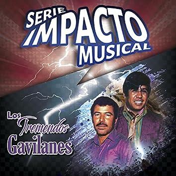 Los Tremendos Gavilanes (Serie Impacto Musical)