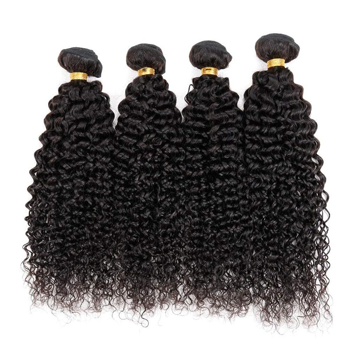 コンパスクックにじみ出るかつら ブラジルの変態巻き毛の束100%未処理の人間の毛髪の拡張子深い巻き毛50グラム/バンドルナチュラルブラック小さな巻き毛のかつら (色 : 黒, サイズ : 28 inch)