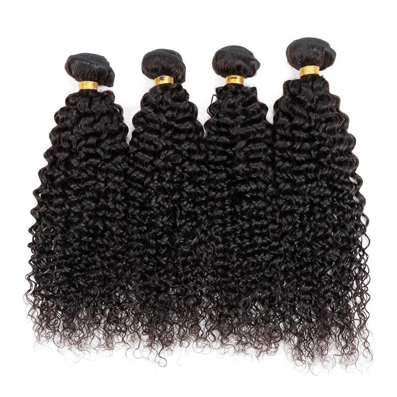 アラブ人チャンバー失礼Isikawan ブラジルの変態カーリーヘアバンドル100%未処理の人間50g /バンドルナチュラルブラックヘアエクステンションディープカーリーヘア (色 : ブラック, サイズ : 20 inch)