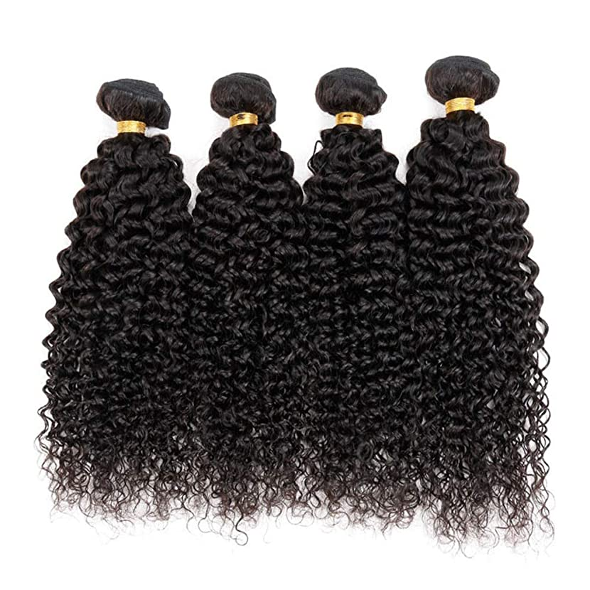 根拠偶然悪用BOBIDYEE ブラジルの変態巻き毛の束100%未処理の人間の毛髪の拡張子深い巻き毛50グラム/バンドルナチュラルブラック小さな巻き毛のかつら (色 : 黒, サイズ : 28 inch)