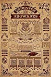 Póster Harry Potter - Quidditch at Hogwarts (61cm x 91,5cm) + embalaje para regalo...