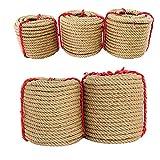 Cuerda de cáñamo fuerte de 10 m, cuerda de yute gruesa para jardín, cuerda de arte para embalaje de regalo, jardín (16 mm x 10 m)