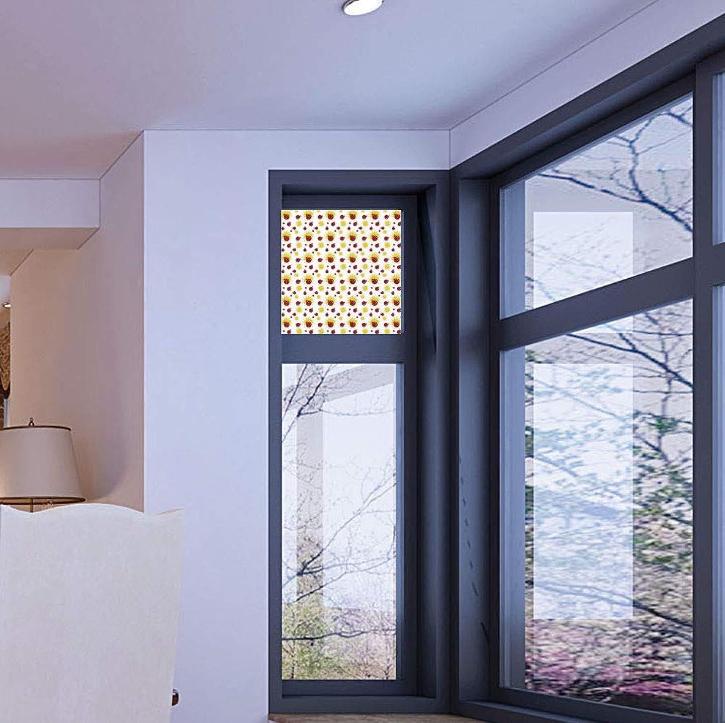 C COABALLA Ethylene Film Printing Design Window Film,Ladybugs,Suitable for Kitchen, Bedroom, Living Room,Summer Season Inspired Sun Pattern Bugs Animal Imagery,17''x24''