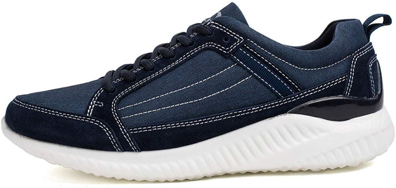 ZHRUI Men Walking shoes Canvas Sport shoes Outdoor Activities Sneakers Lace up Athletic shoes for Men (color   bluee, Size   9=43 EU)