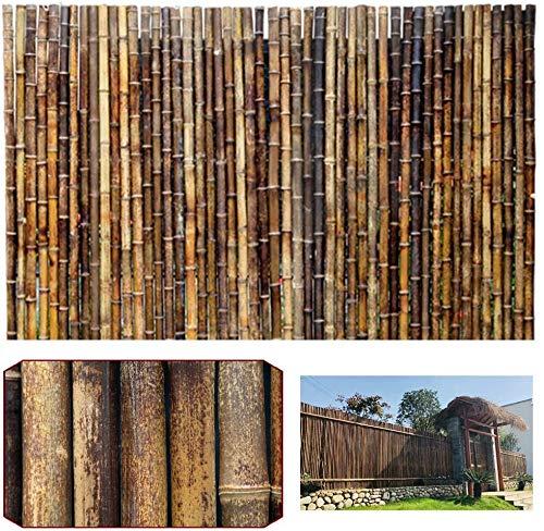 Las terrazas de las cercas decorativas y el jardín antiestético son cercas originales de bambú de la pantalla de la privacidaddecoracion jardin