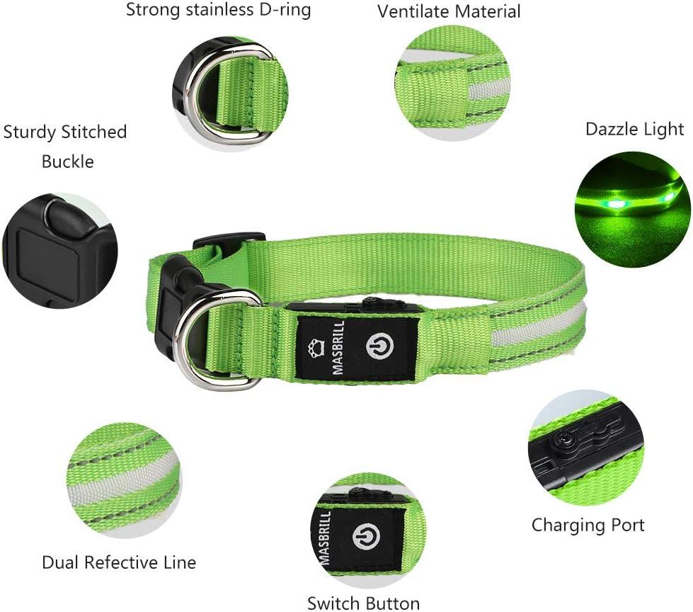 collar reflectante led para perros