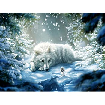 Drawing with Brushes Christmas Decor Decorations Gifts Without Frame DIY Oil Paint by Number Kit for Adults Beginner 16x20 inch-Puppy and Wolf