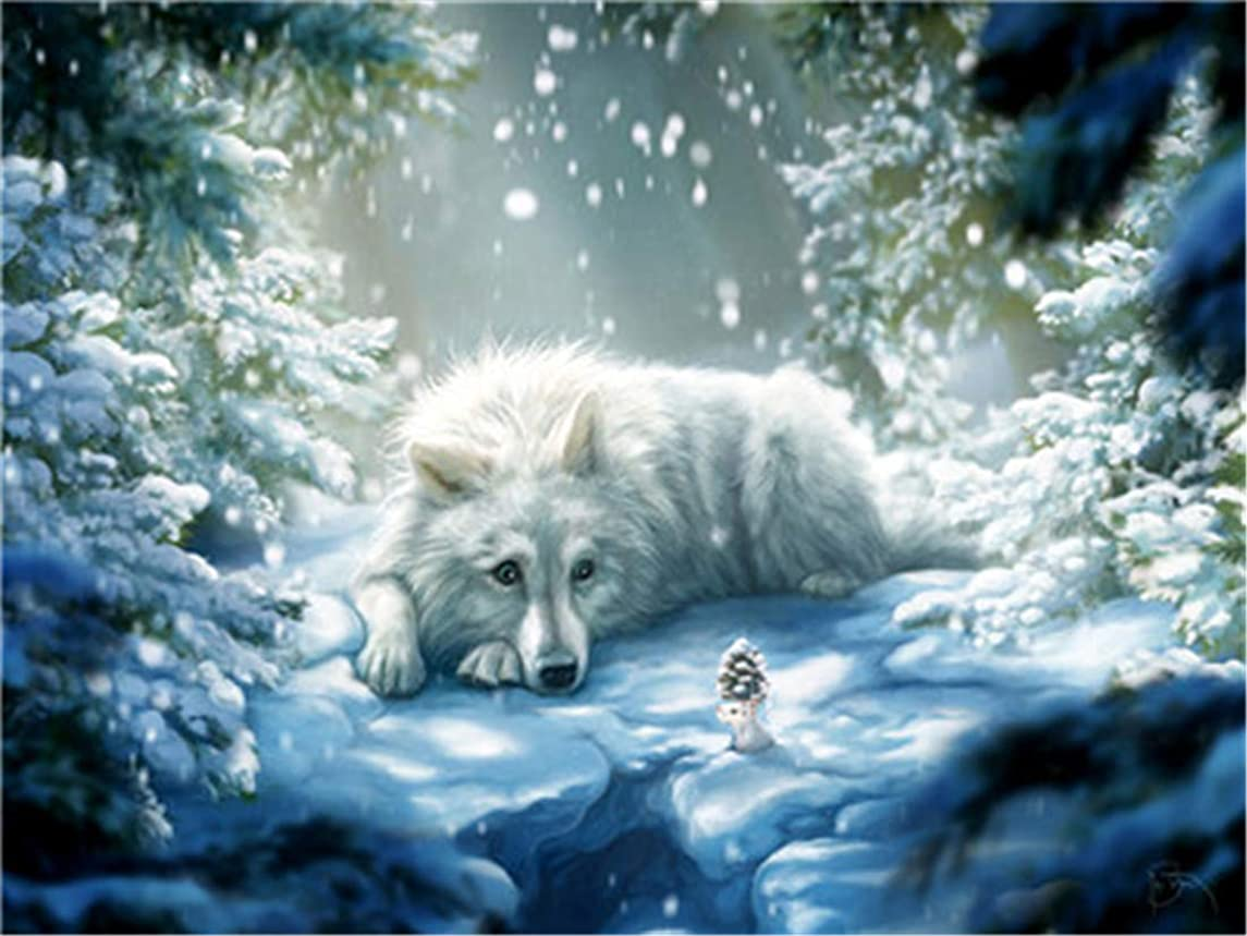 DIY Oil Painting Paint by Number Kit for Kids Adults Beginner 16x20 inch - White Wolf in The Snow, Drawing with Brushes Christmas Decor Decorations Gifts (Frame)