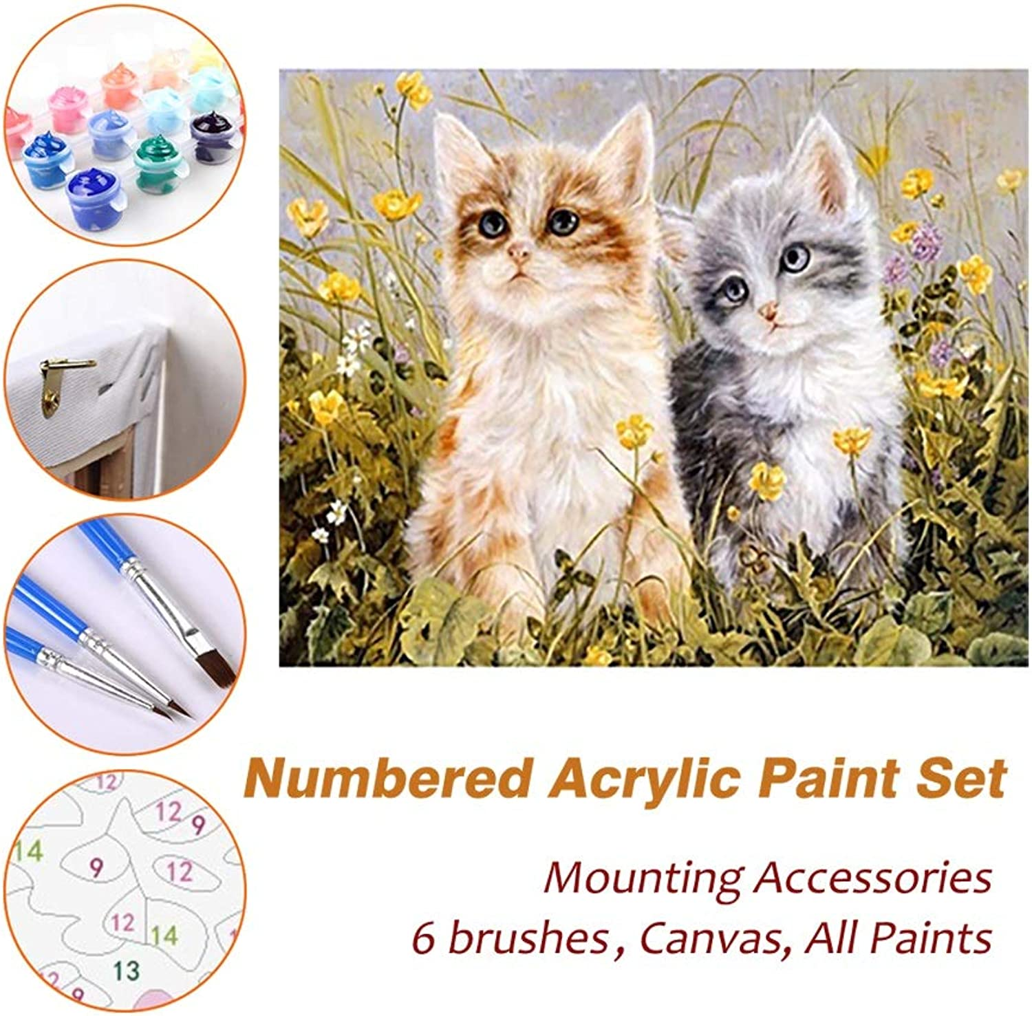 Puzzle House Paint Max Paint By Numbers Kits For Kids Adults Beginner Teens Pine Framed DIY Oil Acrylic Painting Paint Art Brush Sets, Two Kitties 531 (color   With Pine Frame, Size   500mm x 650mm)