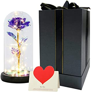 Rose Flower Gift, Beauty and The Beast Rose Kit,Artificial Gift Lasts Forever in a Glass Dome with LED Lights, Rainbow Ros...
