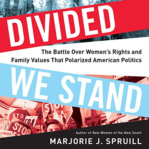 Divided We Stand audiobook cover art
