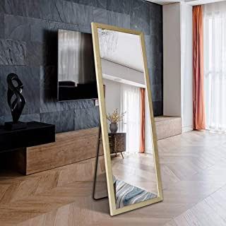"""BOLEN Full Length Mirror PS Polymer Frame Mirror Standing Hanging or Leaning Against Wall Mirror Dressing Mirror 65""""x22""""(Champagne)"""