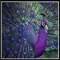 GHXCTKU ダイアモンドビーズ絵画 刺繍 ギフト絵画クロスステッチホームデコレーション刺繍絵画5D DIYのダイヤモンド 紫の孔雀 30*40cm