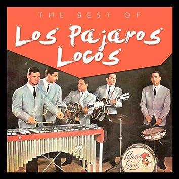 The Best of Los Pájaros Locos