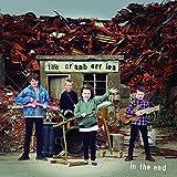 In the End -Indie/Ltd-