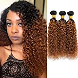 Ombre Brazilian Kinky Curly Hair 3 Bundles, 10A Remy Dark Blonde Curly Weave Human Hair Extensions 100g, 100% Unprocessed Brazilian Virgin Hair Color Brown (10' 12' 14', 1B/30)