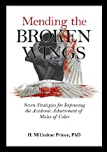 Mending the Broken Wings: Seven Strategies for Improving the Academic Achievement of Males of Color