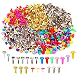 MAMUNU 500 Pieces Split Pins, Multicolor,Silver, Flower Shape and Round Brass Plated Paper Fasteners, DIY Art...