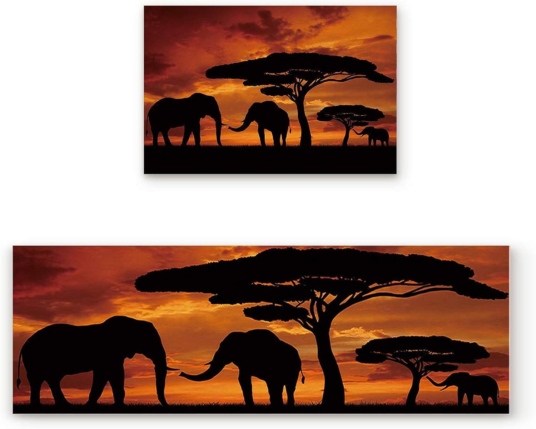 KAROLA 2 Piece Non-Slip Kitchen Mat Doormat Runner Rug Set Thin Low Pile Indoor Area Rugs African Sunset Elephants Family 19.7 x31.5 +19.7 x47.2
