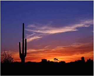 Paint By Numbers sunset in wild west desert cactus stock pictures royalty free photos Digital Coloring Oil Painting Canvas...