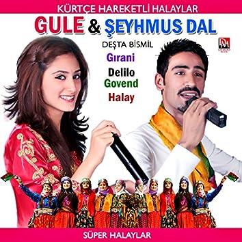 Deşta Bismil / Gırani Delilo Govend Halay (Kürtçe Hareketli Halaylar / Süper Halaylar)
