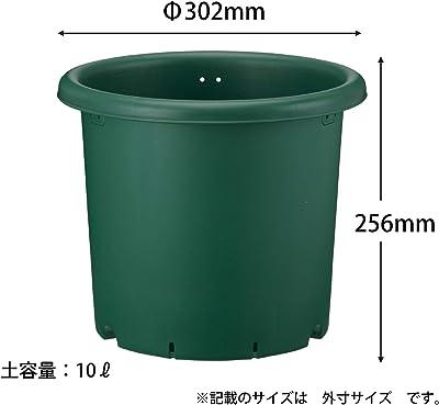 アップルウェアー 野菜鉢 30型 グリーン