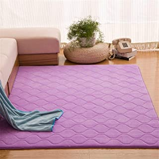 Coral Velvet Carpet Baby Play Crawling Area Rug Solid Anti-Slip Bedroom Mat Large Carpet Rugs for Living Room