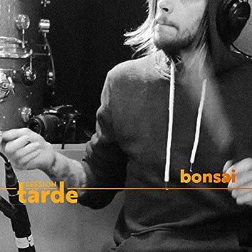 Bonsai (Session da Tarde) - Single