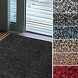 Mammut Fußmatte Karat für Eingangsbereiche | extra saugstarke Schmutzfangmatte aus Baumwolle | rutschfest | waschbar | zahlreiche Größen | viele Farben | 60x100 cm | Granit-Beige