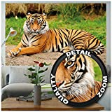 Great Art XXL Poster – Majestätischer Tiger – Wandbild
