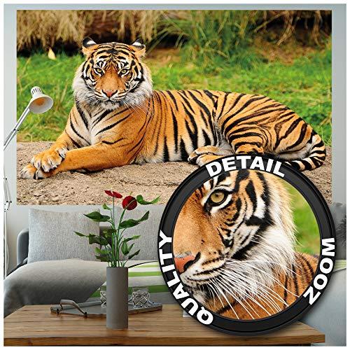GREAT ART XXL Poster – Majestätischer Tiger – Wandbild Dekoration Panthera Tigris Raubkatze Wildkatze Wildtiere Großkatze Tierbilder Wandposter Fotoposter Wanddeko Bild (140 x 100 cm)