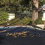Harris Economy Leaf Net for 16'x34' Inground Rectangular Pool