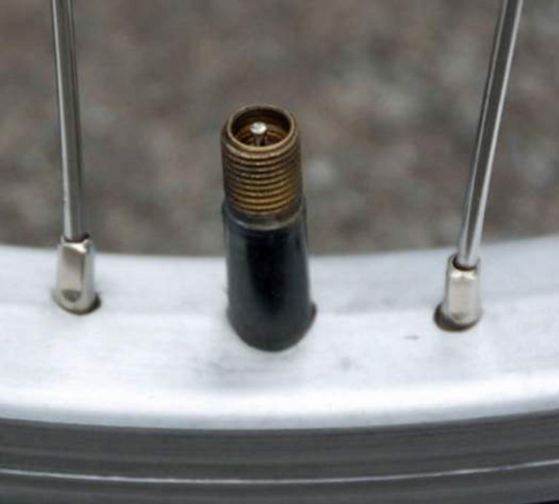 Bell Universal Inner Tube