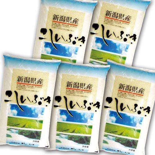 【精米】 新潟県産 こしいぶき 25kg (5kg×5袋) 令和元年産 新潟県直送