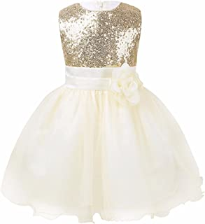 TiaoBug Baby Girls Sequins Mesh Flower Princess Wedding Pageant Birthday Party Dress