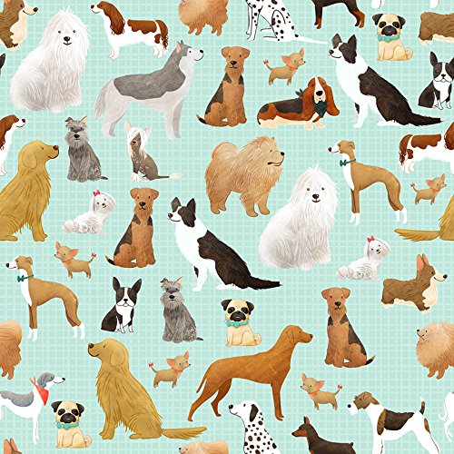 Best in The Show Dog Gift Wrap Flat Sheet - 24' x 6'