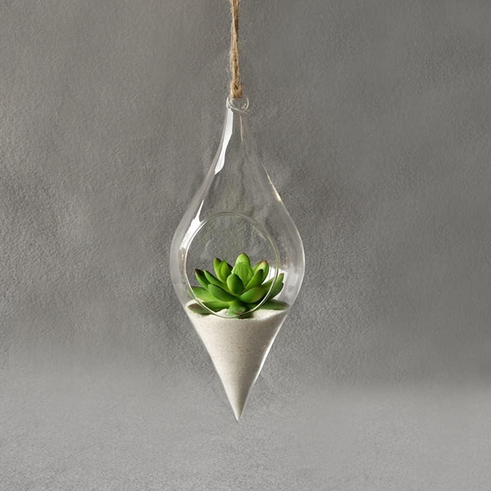 JSJJAUJ vase Free shipping anywhere in the nation High Borosilicate Superlatite Glass Plants Terra Holder Hanging